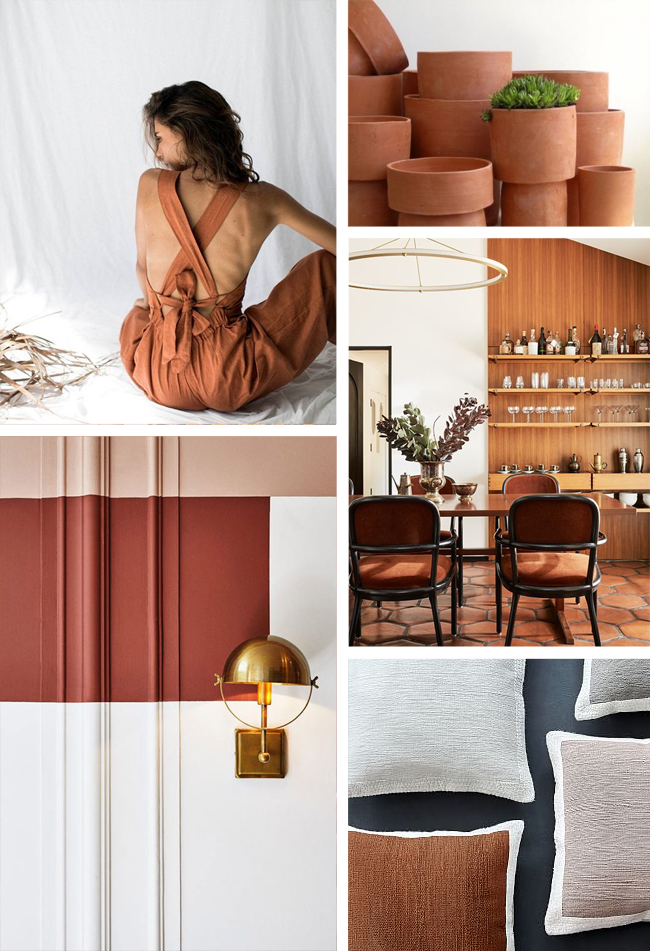 Sherwin Williams Color of the Year 2019 - Cavern Clay